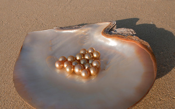 Khám phá các loại ngọc trai biển